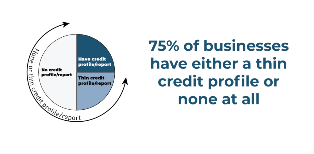 75% of small businesses have thin or no credit files